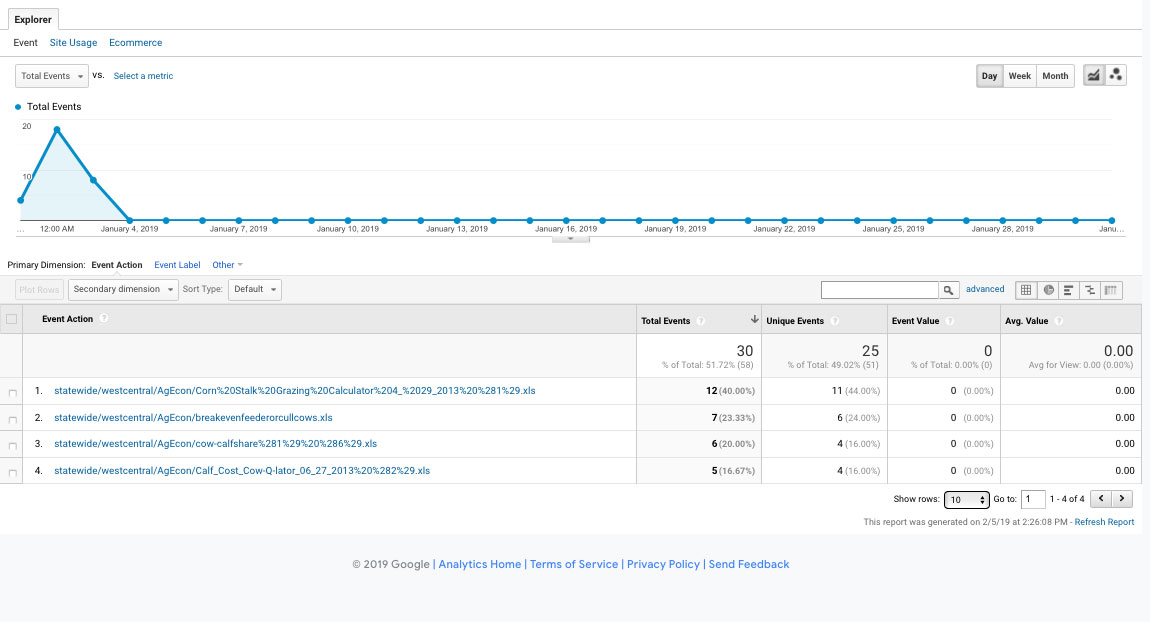 Screenshot of Google Analytics Download Report